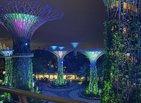 Supertrees in Singapur